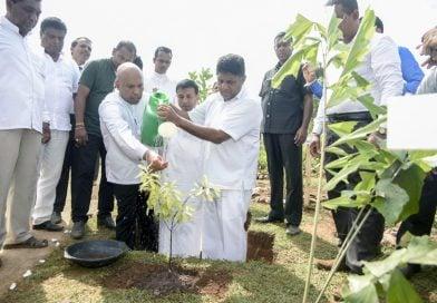 """Dambaranpura"" declared open to Public"